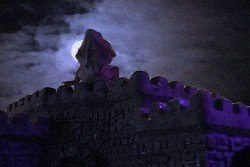 Bearded dragon on a castle