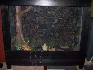 Reptile Cages Rock Wall Reptile Tanks For Salereptile
