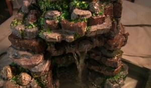 turtle habitat