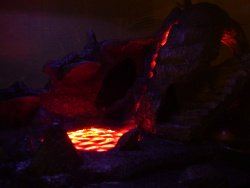 Lizard cage volcano